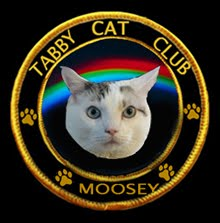 PROUD MEMBER - TABBY CAT CLUB