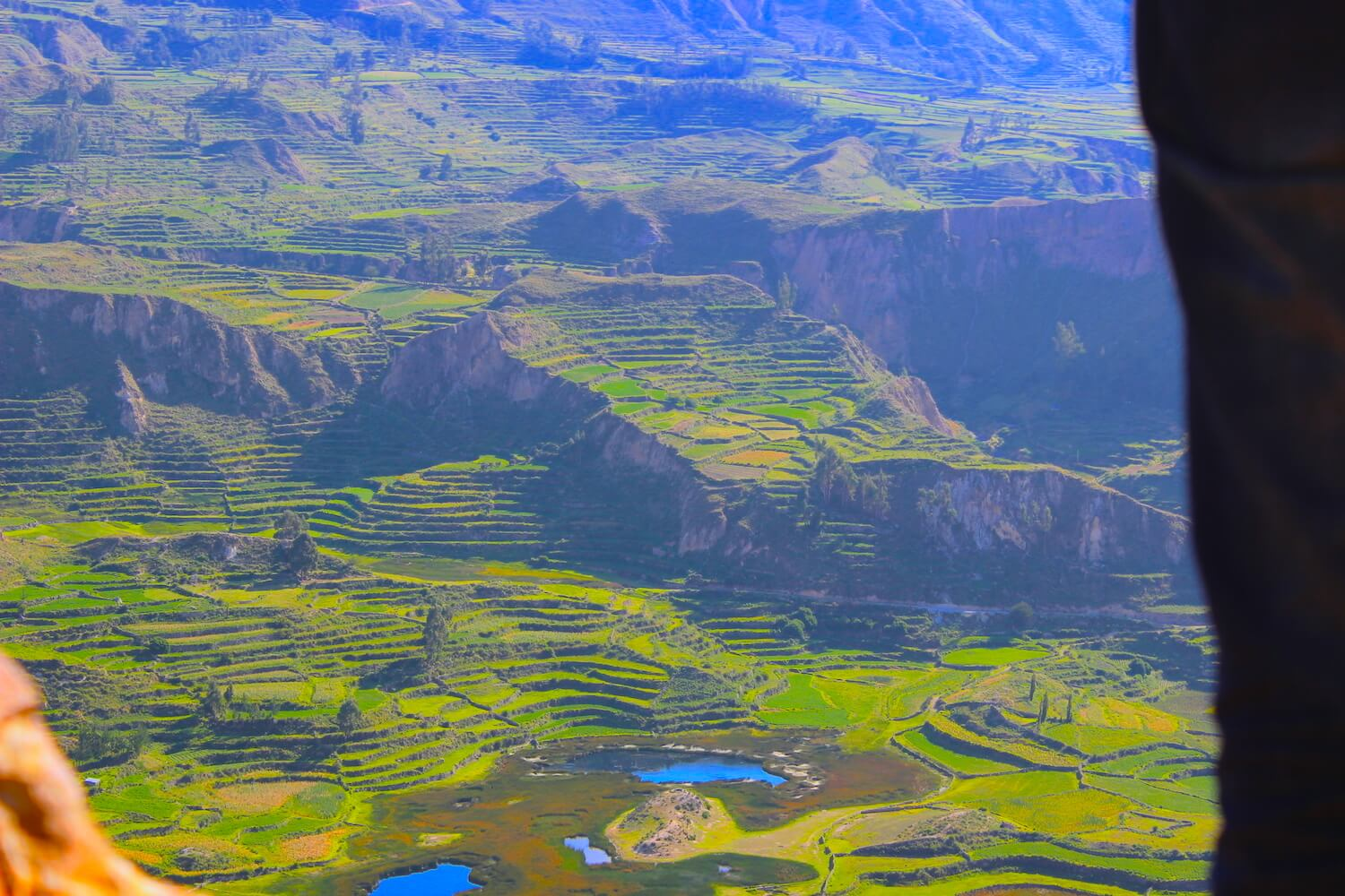 colca valley terraces close up