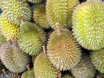 Jangan Buang Kulit Durian! Inilah Manfaat Kulit Durian