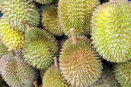 Jangan Buang Kulit Durian! Inilah 12 Manfaat Kulit Durian