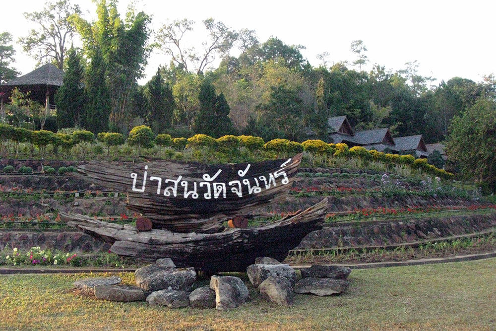 Dream Destination Thailand : Ban Wat Chan Pine Forest