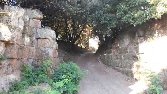 Strada di campagna e mura etrusche