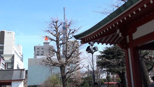 La torre Tokio Skytree vista desde el templo de Asakusa