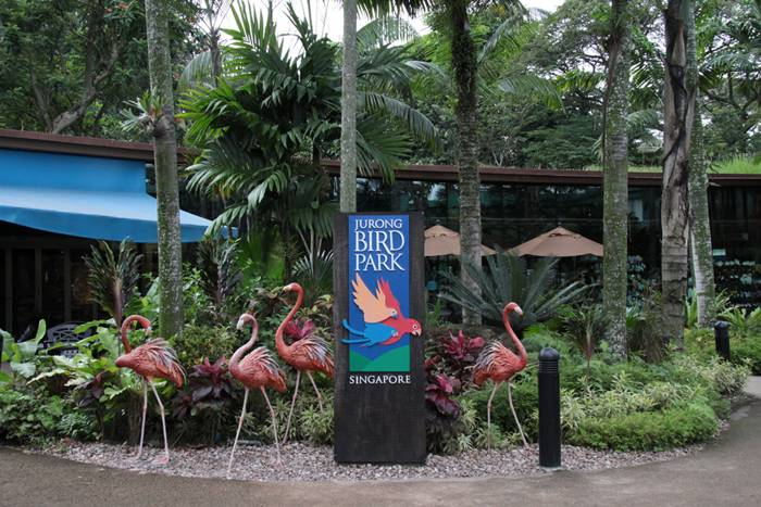 Jurong Bird Park, is a tourist attraction in Singapore managed by Wildlife Reserves Singapore. It is a landscaped park, built on the western slope of Jurong Hill. It is located within the Boon Lay Planning Area of the Jurong district and has an area of 202,000 square metres (50 acres).