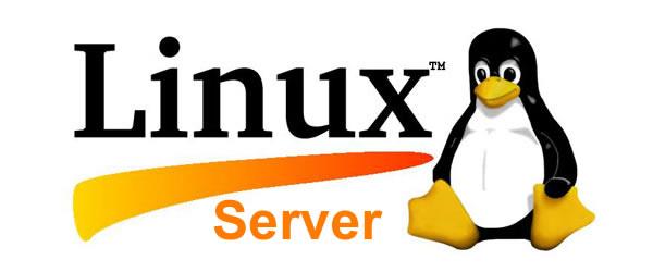 linux server - Distro Linux Untuk Membangun Server