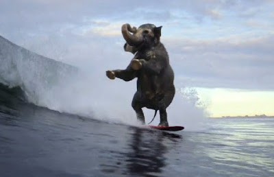 Sistema de Surf