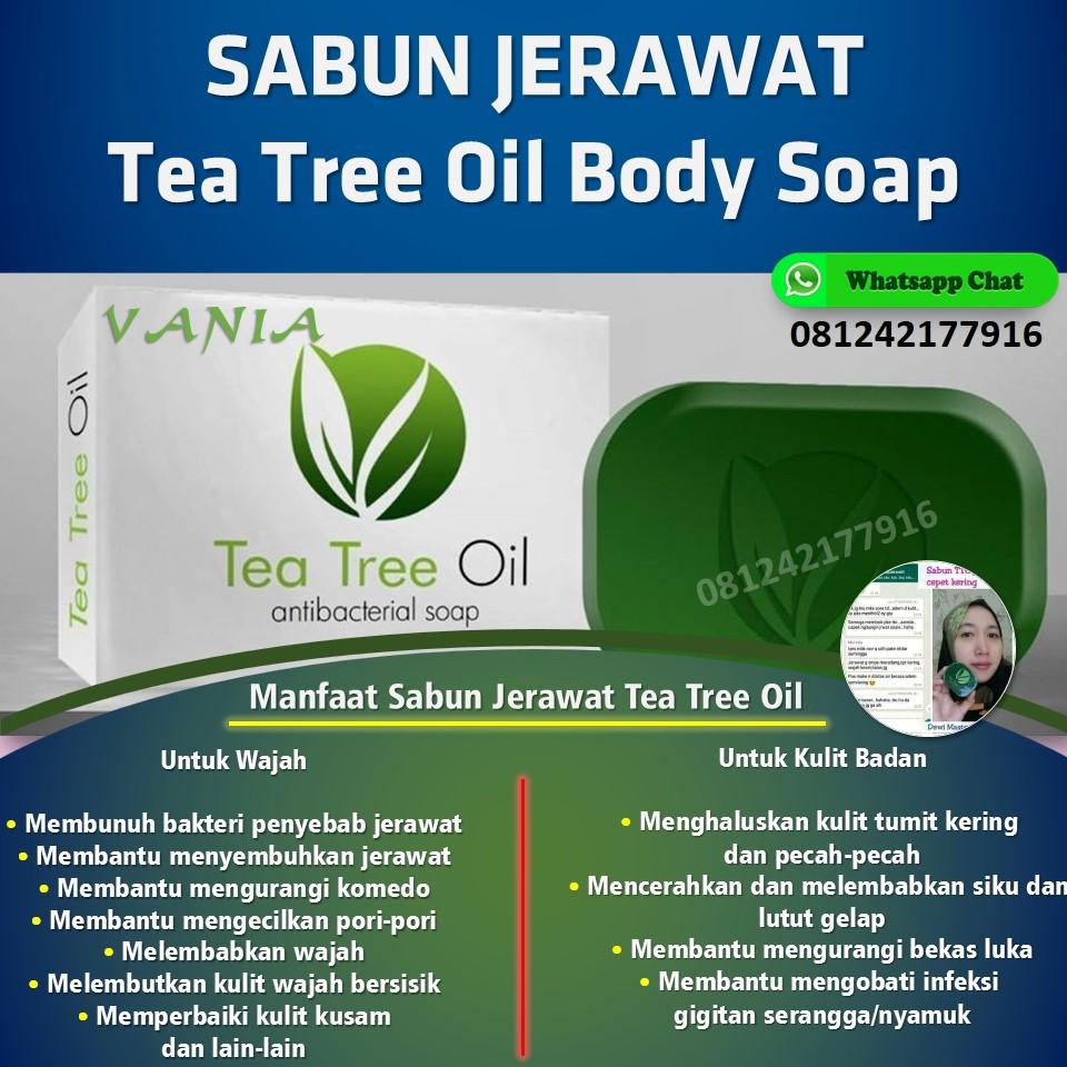 Sabun Jerawat Tea Tree Oil Body Soap, Manfaat Dan Harga