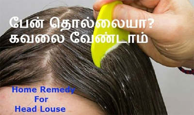 Home Remedy For Head Louse