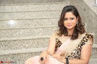 Shilpa Chakravarthy in Lovely Designer Pink Saree with Cat Print Pallu 046.JPG