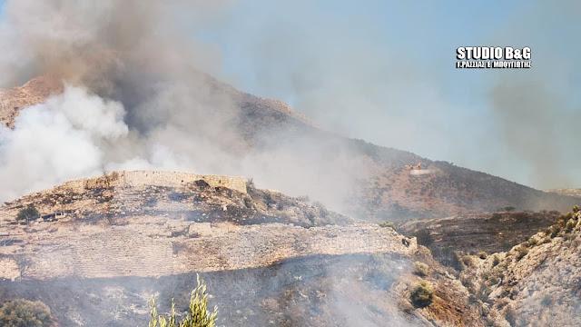 Η πρώτη εκτίμηση των ζημιών από την πυρκαγιά στις Μυκήνες - Κλειστοί Αρχαιολογικός χώρος και Μουσείο