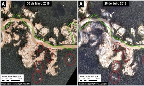 Documentan deforestación en reserva peruana