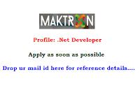 Maktron-Global-IT-Solutions-.net-developer