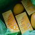 Vitamino C galia su /Kili-g/