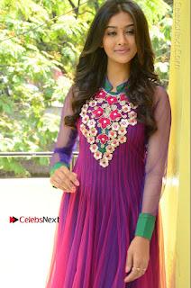 Actress Pooja Jhaveri Latest Stills in Purple Salwar Kameezt at Dwaraka Success Meet  0118.JPG