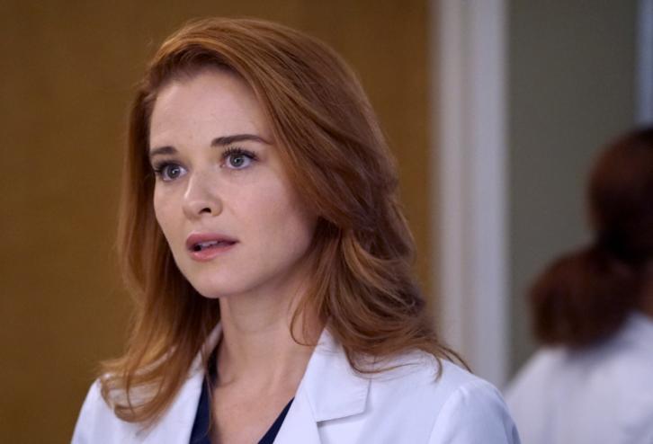 Grey's Anatomy - Episode 13.14 - Back Where You Belong - Promo, Sneak Peek, Promotional Photos & Press Release