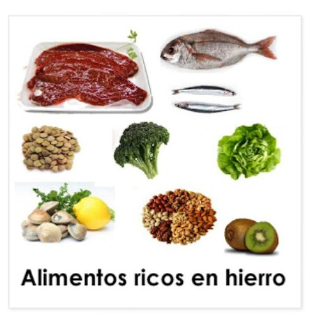 Educaci n alimentaria y nutricional estatus de deficiencias de micronutrientes en el ni o - Alimentos que contengan hierro para embarazadas ...