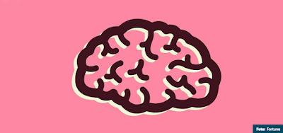 http://www.eligeeducar.cl/neurociencia-educacion-12-principios-educador-deberia-conocer