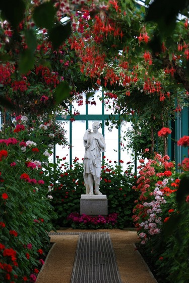Fuchsia y Pelargonium en Small Geranium Gallery en Invernaderos Reales de Laeken