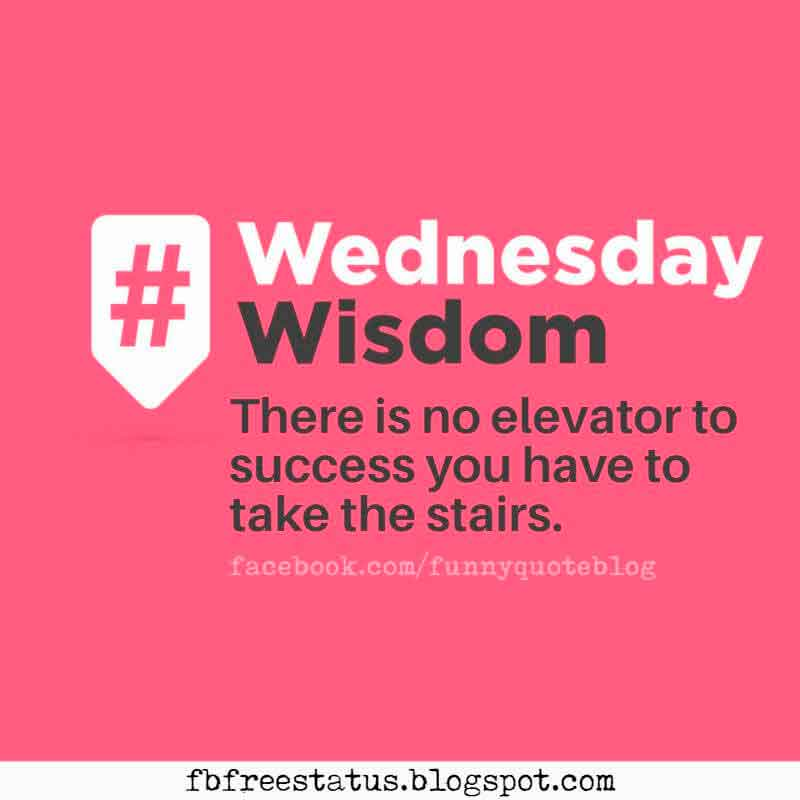 There is no elevator to success you have to take the stairs. Wednesday Wisdom Quote.