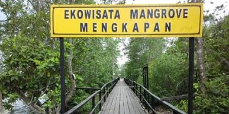 Ekowisata Mangrove Mengkapan ekowisata mangrove mengkapan siak