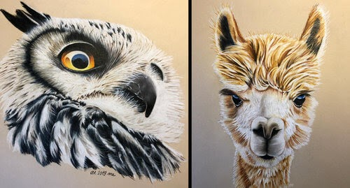 00-Eichenberger-Rodriguez-Colored-Wildlife-Drawings-www-designstack-co