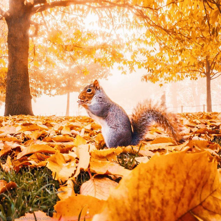 How Autumn Looks All Over the World by Photographer Kristina Makeeva