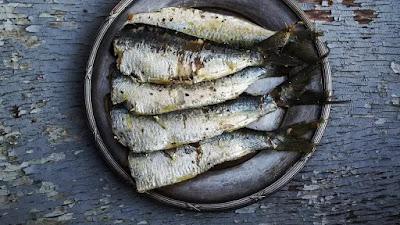 Cara Aman Mengonsumsi Ikan Kalengan