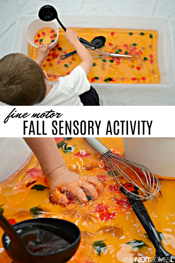 Fine motor fall sensory bin for toddlers and preschoolers
