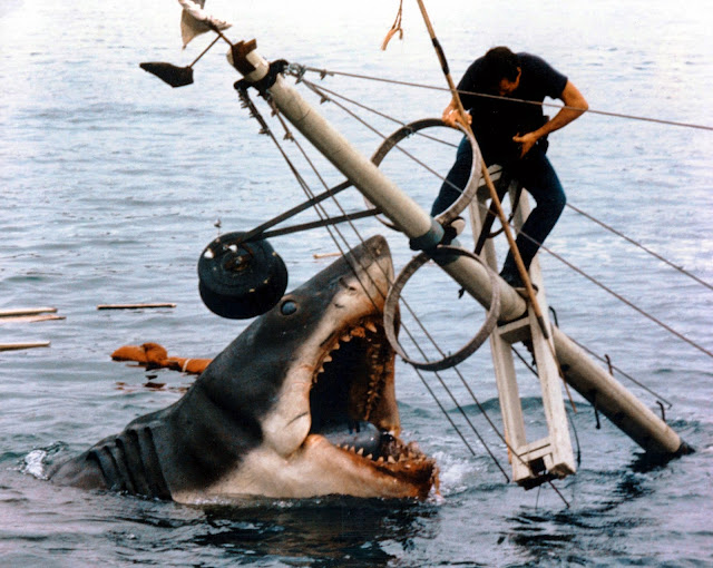donna rita - na sua estante - nas mandíbulas do tubarão