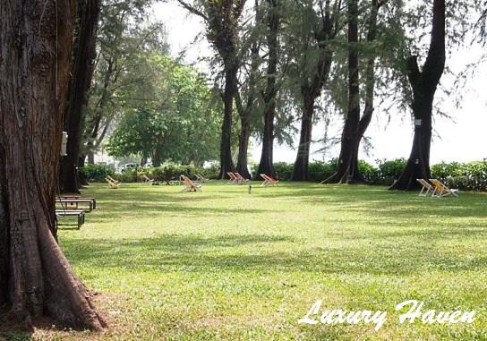 lone pine boutique hotel penang garden greenery