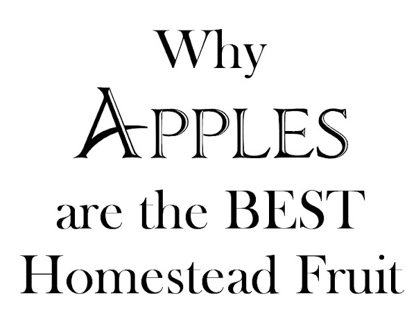 Why Apples are the Best Homestead Fruit Crop