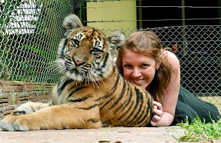 Tiger Kingdom vs Tiger Temple: Happy Tiger
