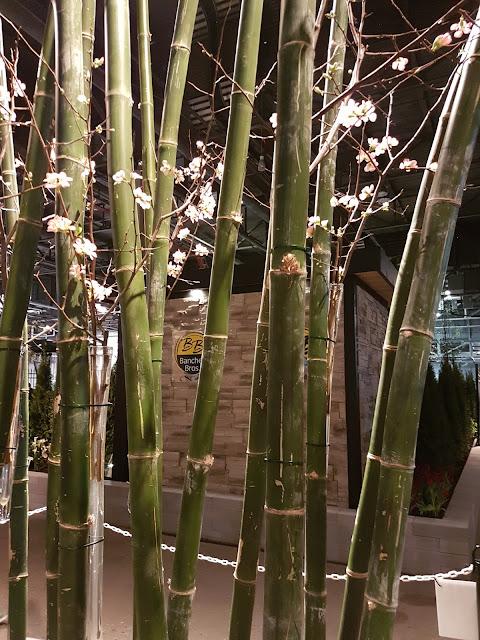 floral design Canada blooms 2018
