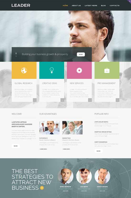 Best business consulting website templates free premium 2016 leader consulting responsive website template pronofoot35fo Choice Image