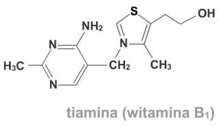 O witaminach z grupy B słów kilka - witamina B1