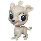 Littlest Pet Shop Pet Pawsabilities Fleetly Greycloud (#43) Pet