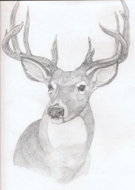 Black And White Deer Paintings