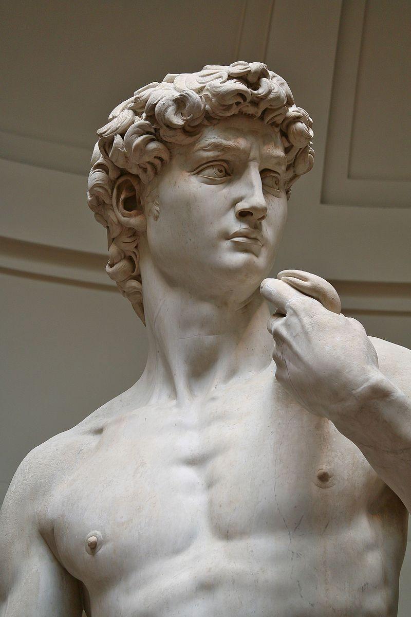 der staunenden menge erstrahlt das kunstwerk welches laut einem zeitgenossen selbst alle antiken meisterwerke bertrumpft der - Michelangelo Lebenslauf