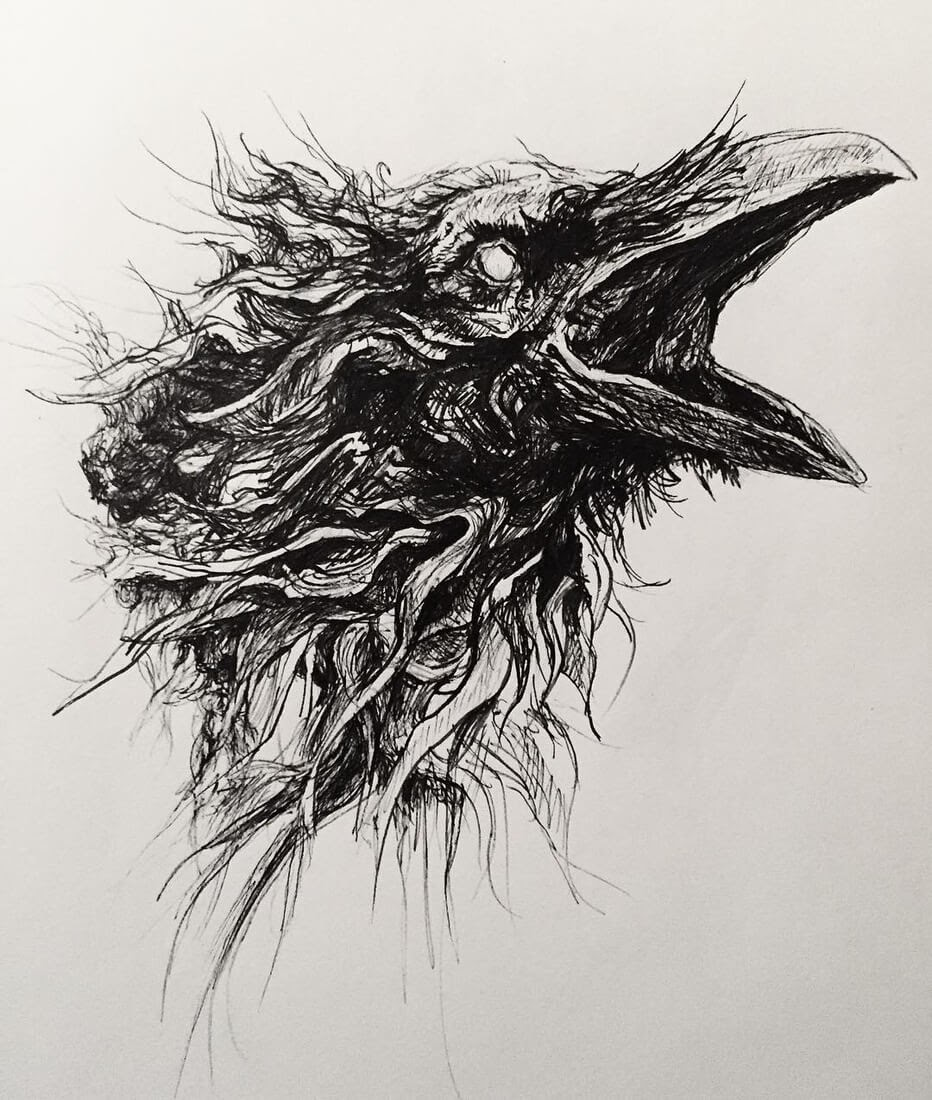 10-Raven-Matthew-McHugh-Animal-Drawings-and-Surreal-Interpretations-www-designstack-co