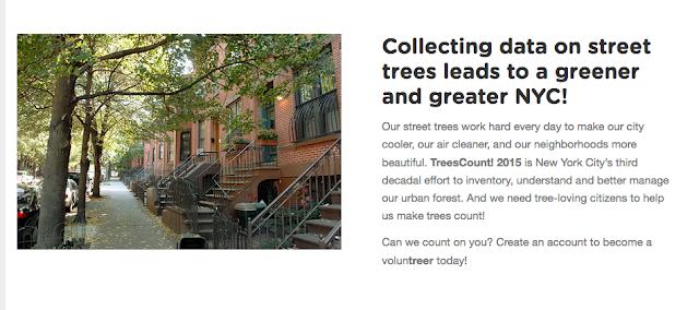 https://treescount.nycgovparks.org/