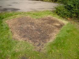 afdruk grondzeil in het gras