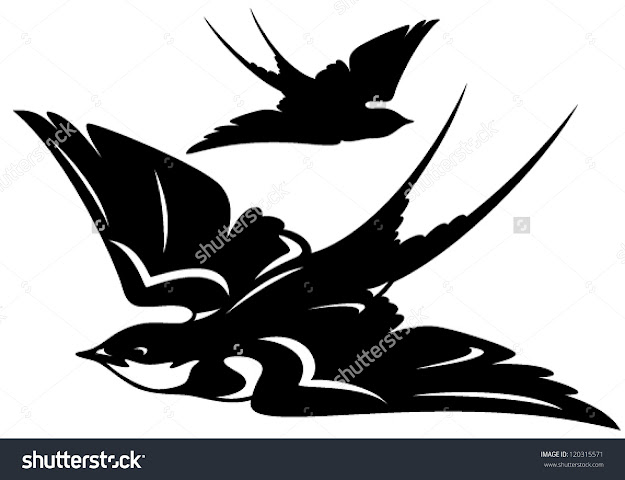 Flying Swallow Bird Vector Illustration  Black And White Outline And  Silhouette