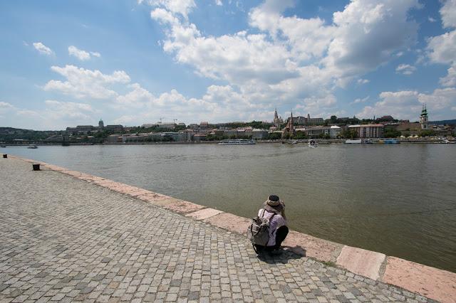 Collina del castello e Danubio-Budapest