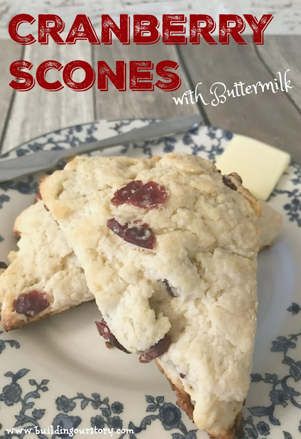 The Nightingale book review, The Nightingale book giveaway, The Nightigale by Kristin Hannah, Kristin Hannah Author, easy scone recipe, easy buttermilk scone recipe, cranberry scone recipe, scone recipes, buttermilk scones, how do you make a scone?
