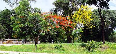 Road travel near Ranong