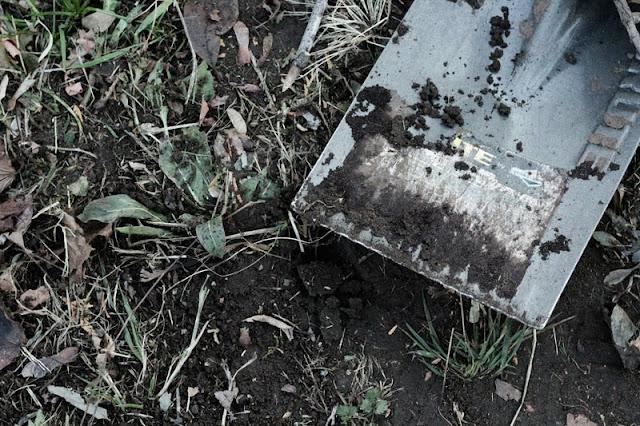 shovel against the mud