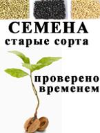 Семена старых сортов растений