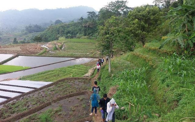 Rute ke Curug Putri Brebes