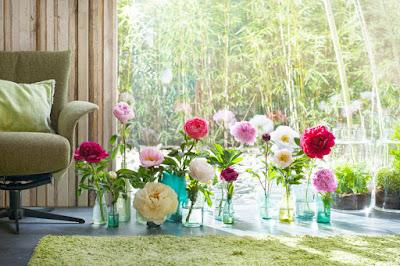 λουλουδια της άνοιξης
