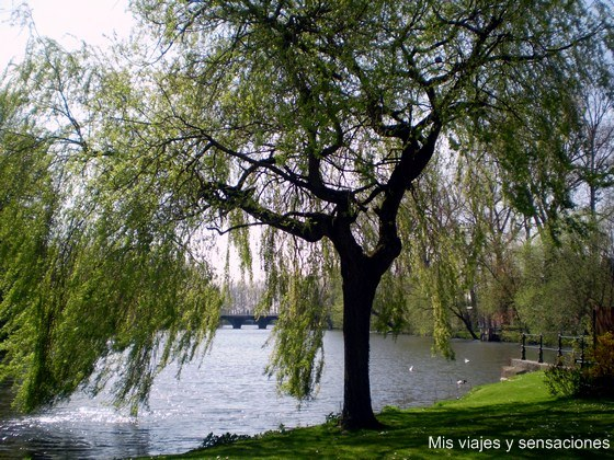 El parque Minnewatter, Brujas, Bélgica